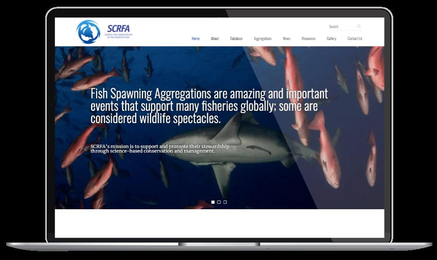 SCRFA - Web Design and Development