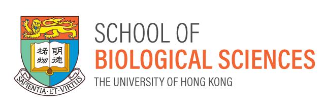 HKU SBS logo design